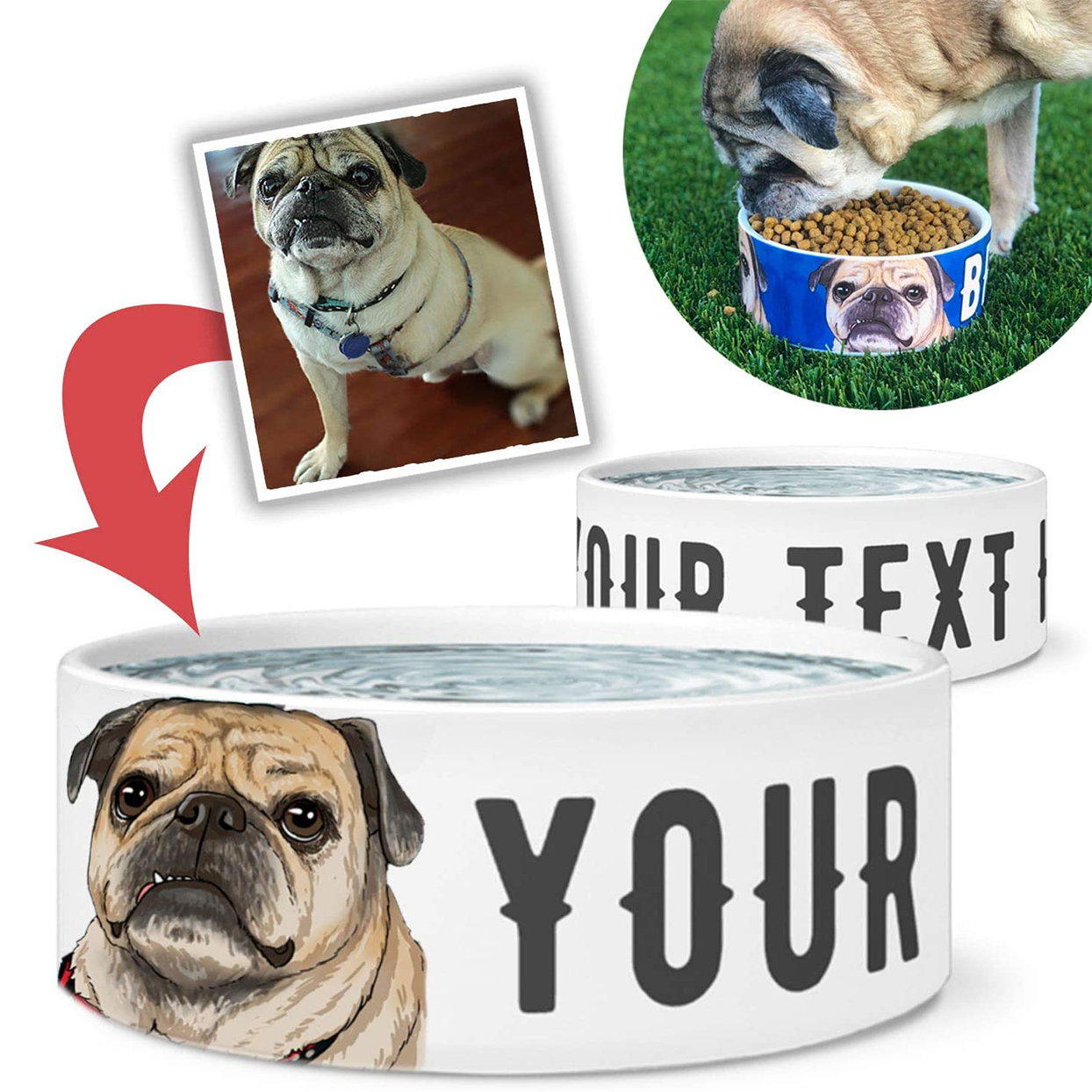 personalized illustration dog bowl