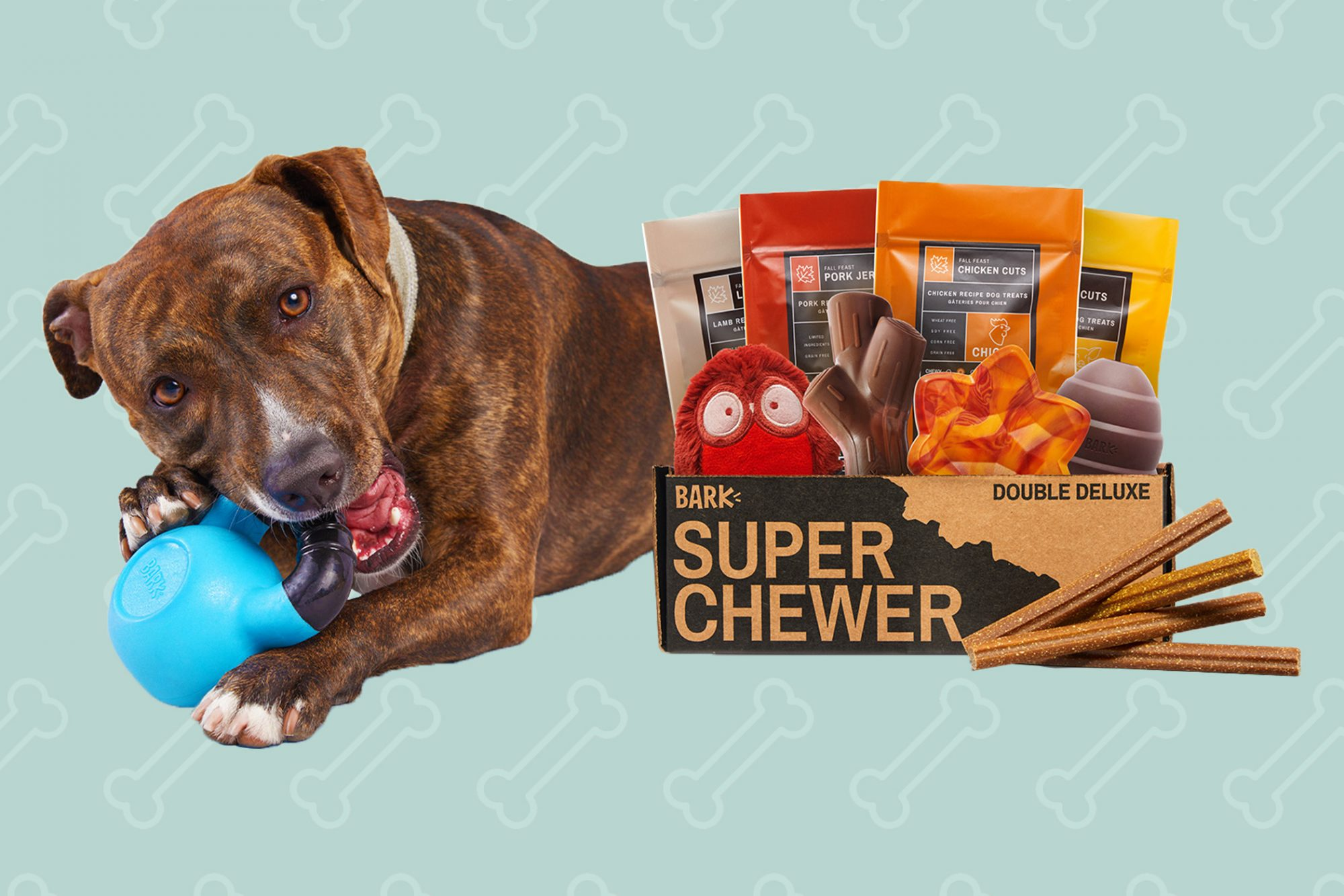 dog with a box of chews