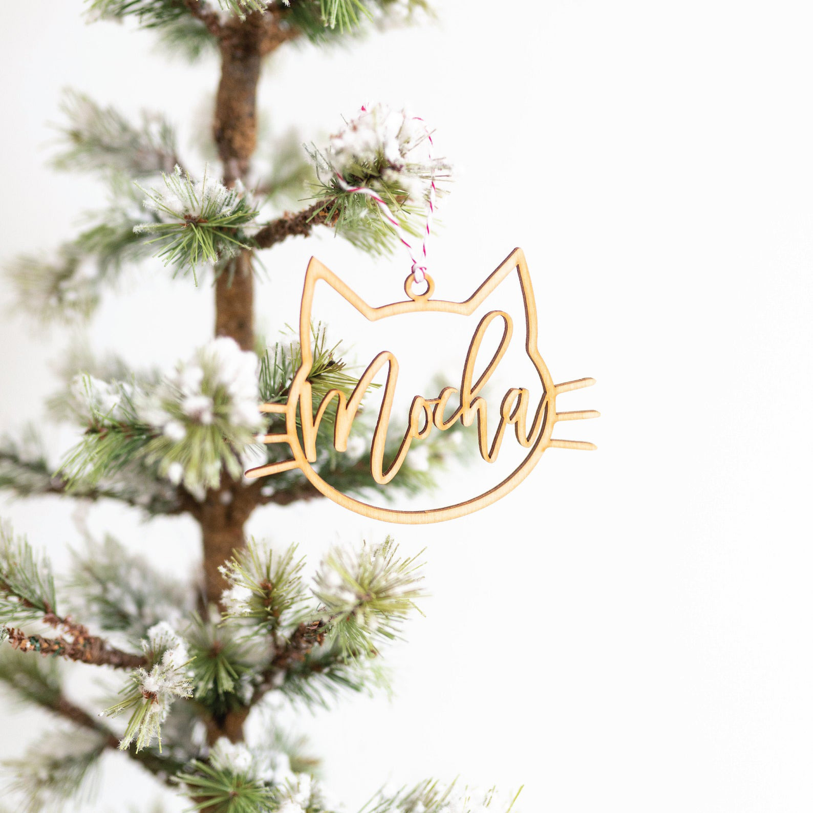 personalized-cat-ornament