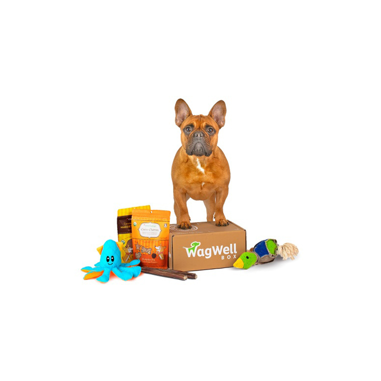 wag well subscription box