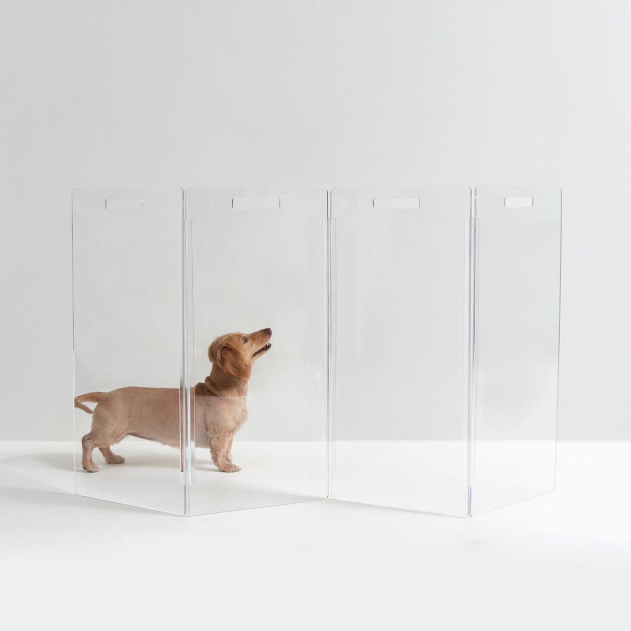 clear acrylic freestanding pet gate