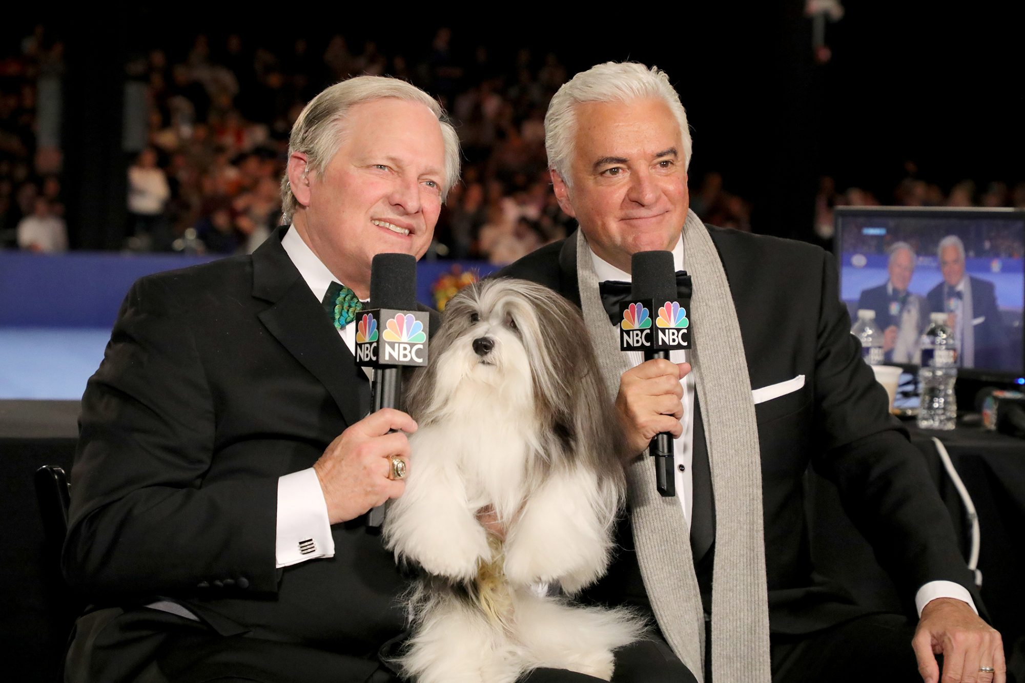 John O'hurley and David Frei with a dog