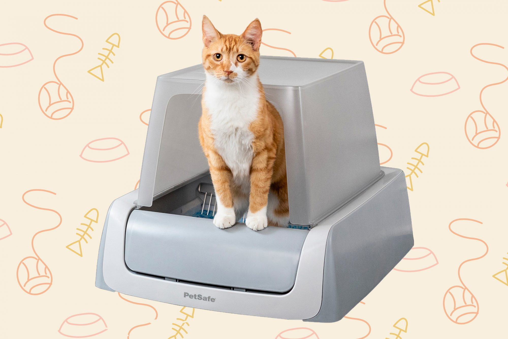 orange tabby coming out of a self-cleaning litter box
