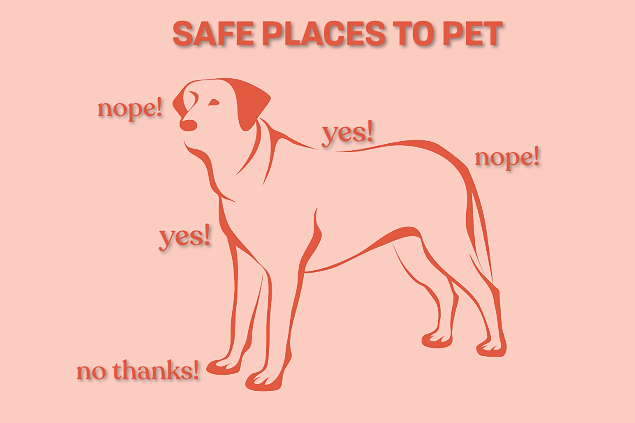 where to pet a dog illustration