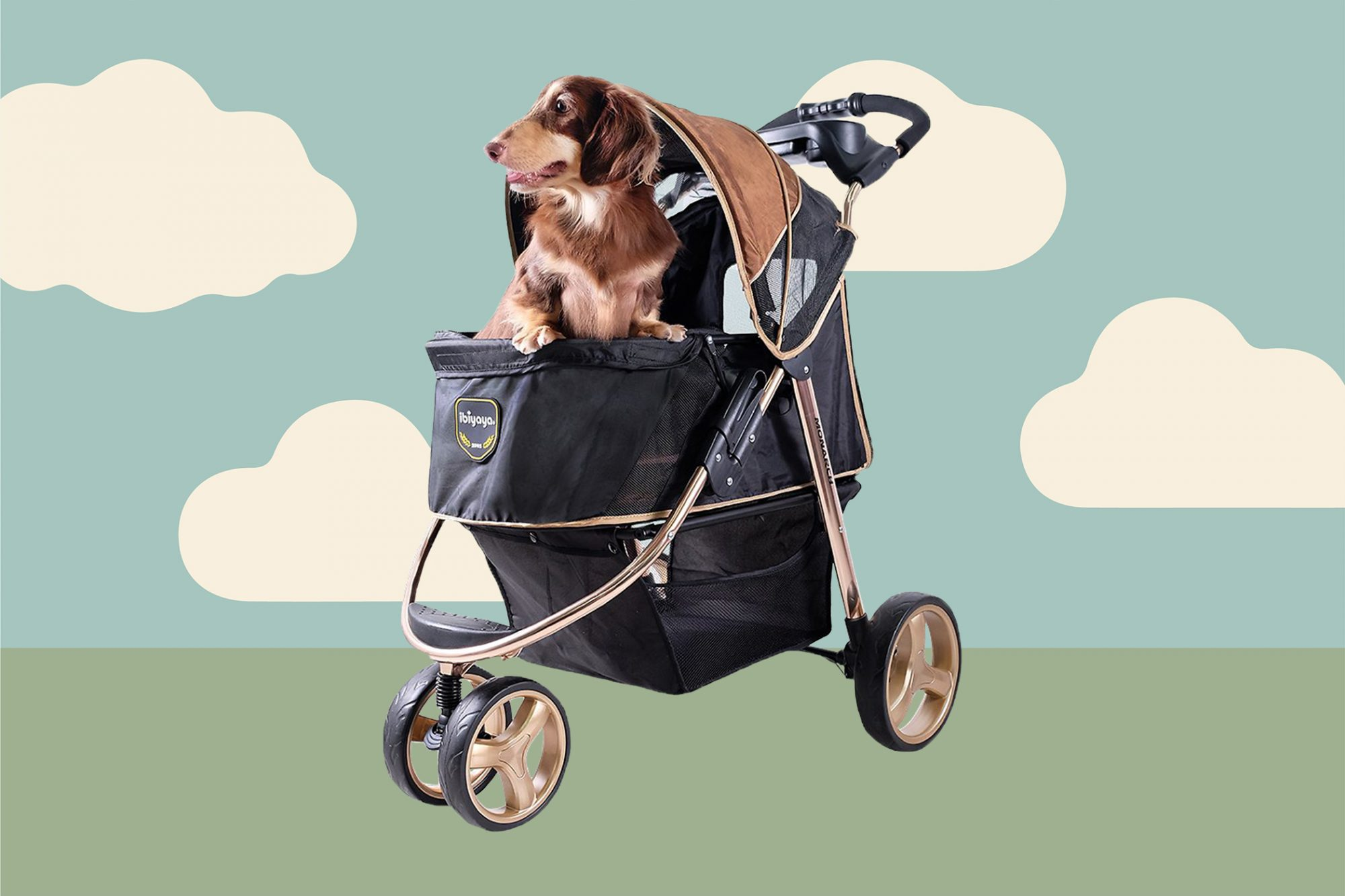 Medium-sized brown dog sits in black dolly stroller; cloud illustration in background