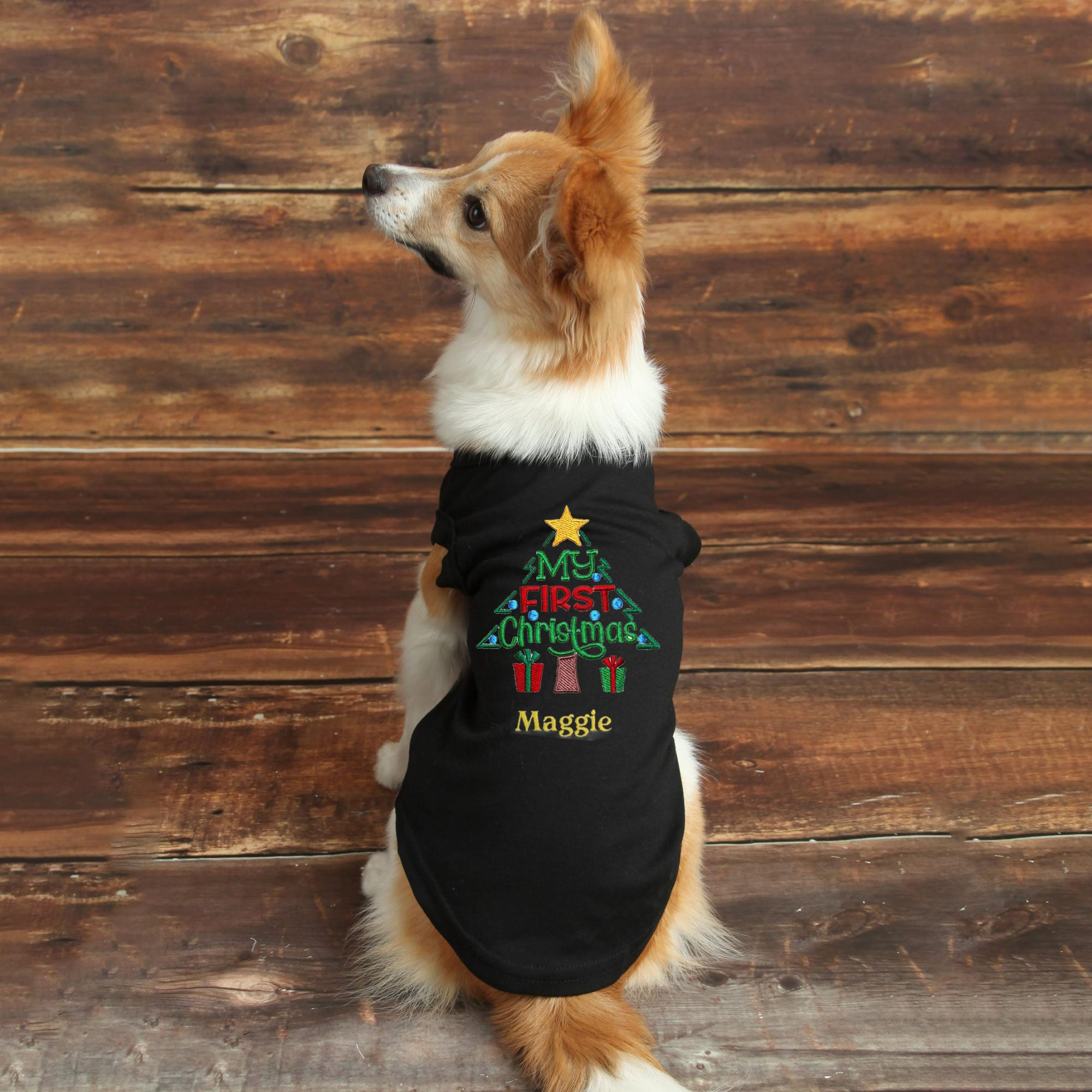 dogs-first-christmas-outfit