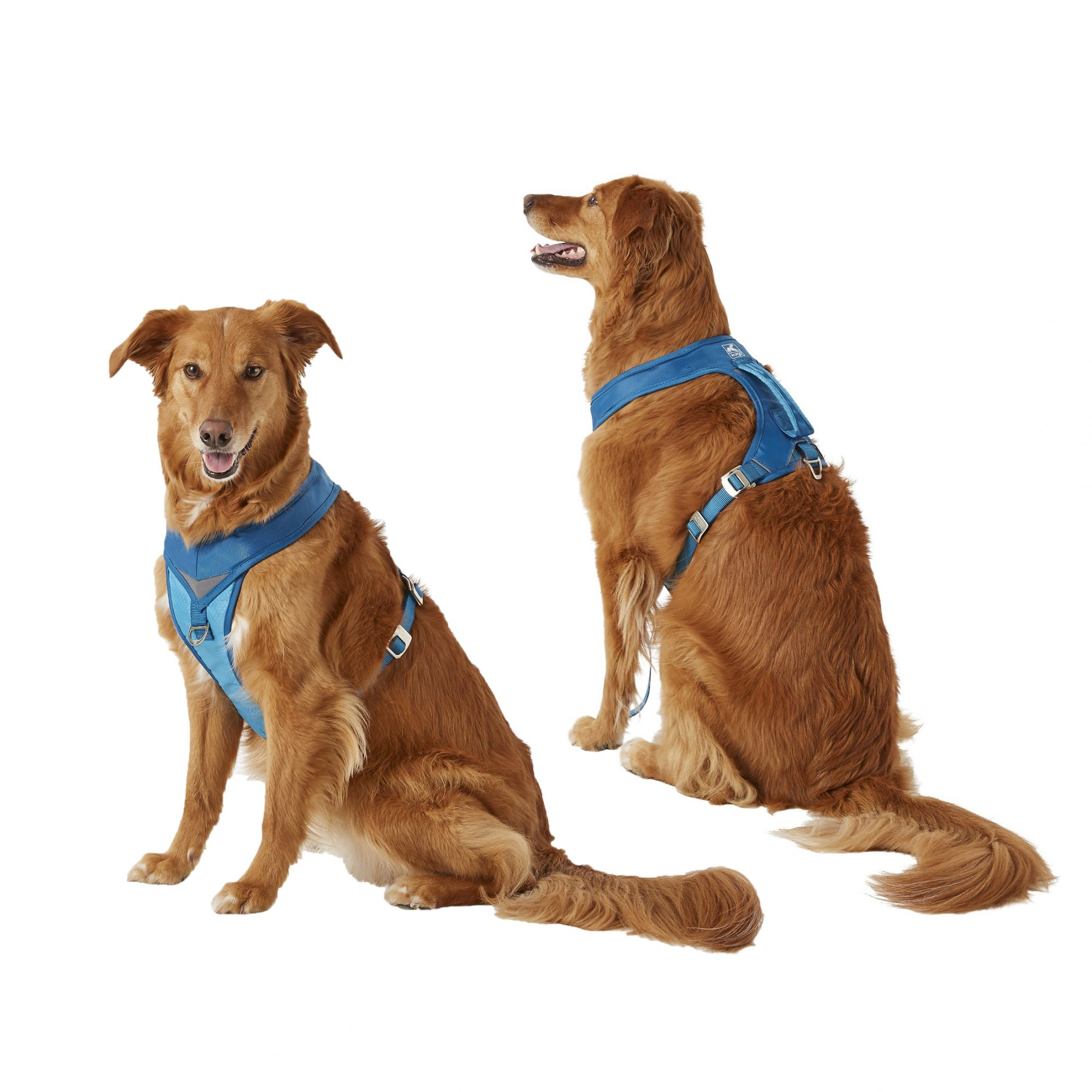 kurgo-go-tech-adventure-nylon-reflective-dog-harness-2