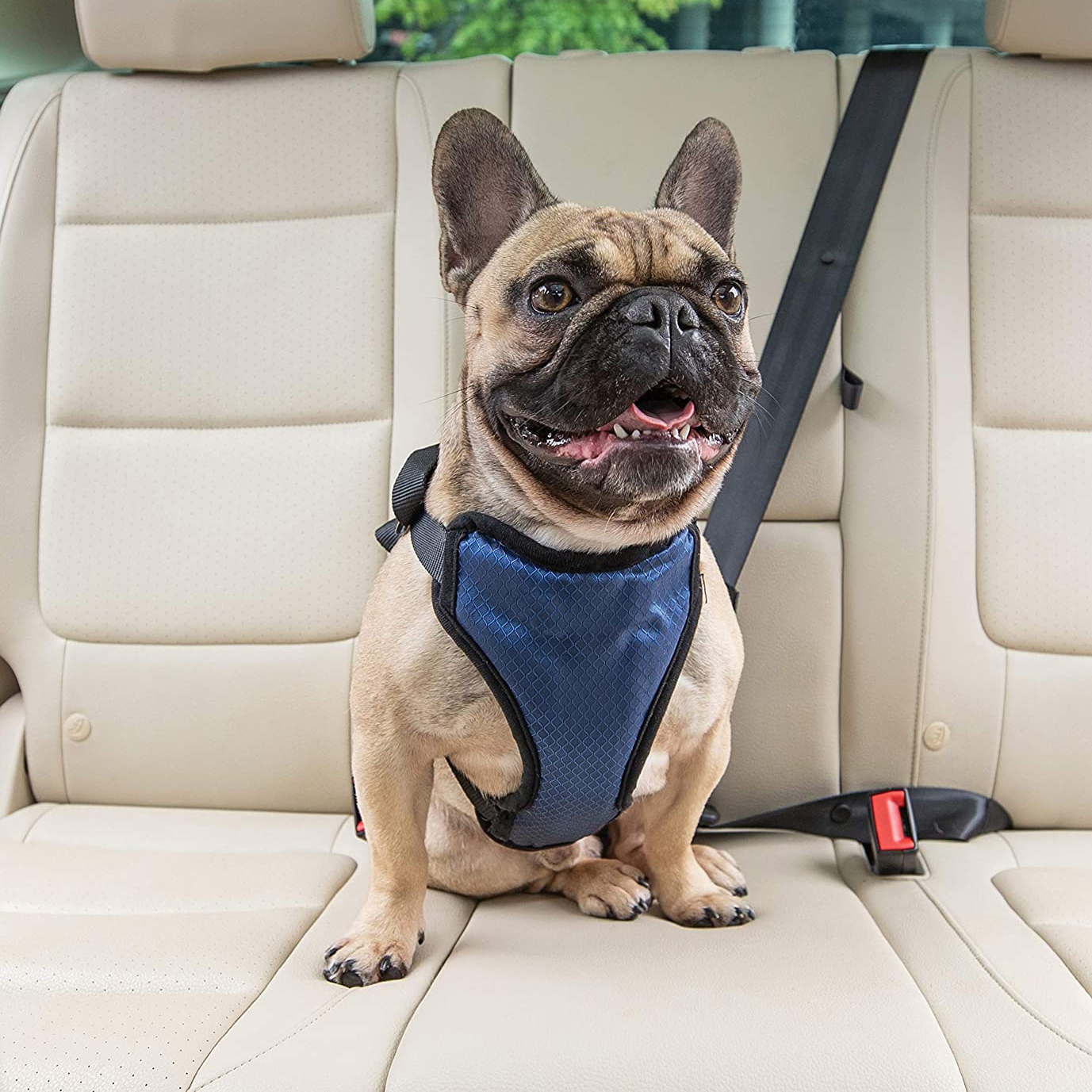 petsafe-happy-ride-deluxe-car-harness