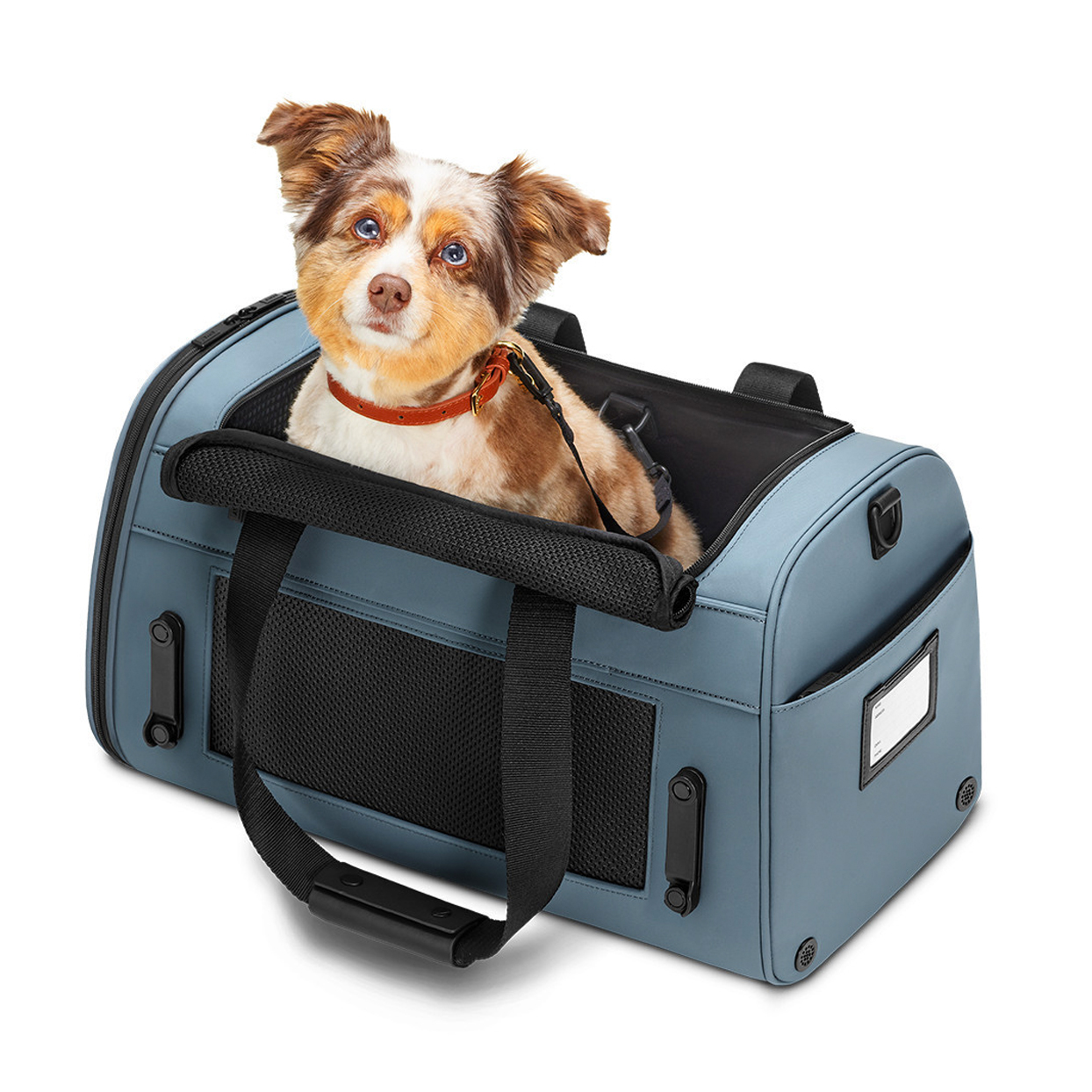 away-the-pet-carrier