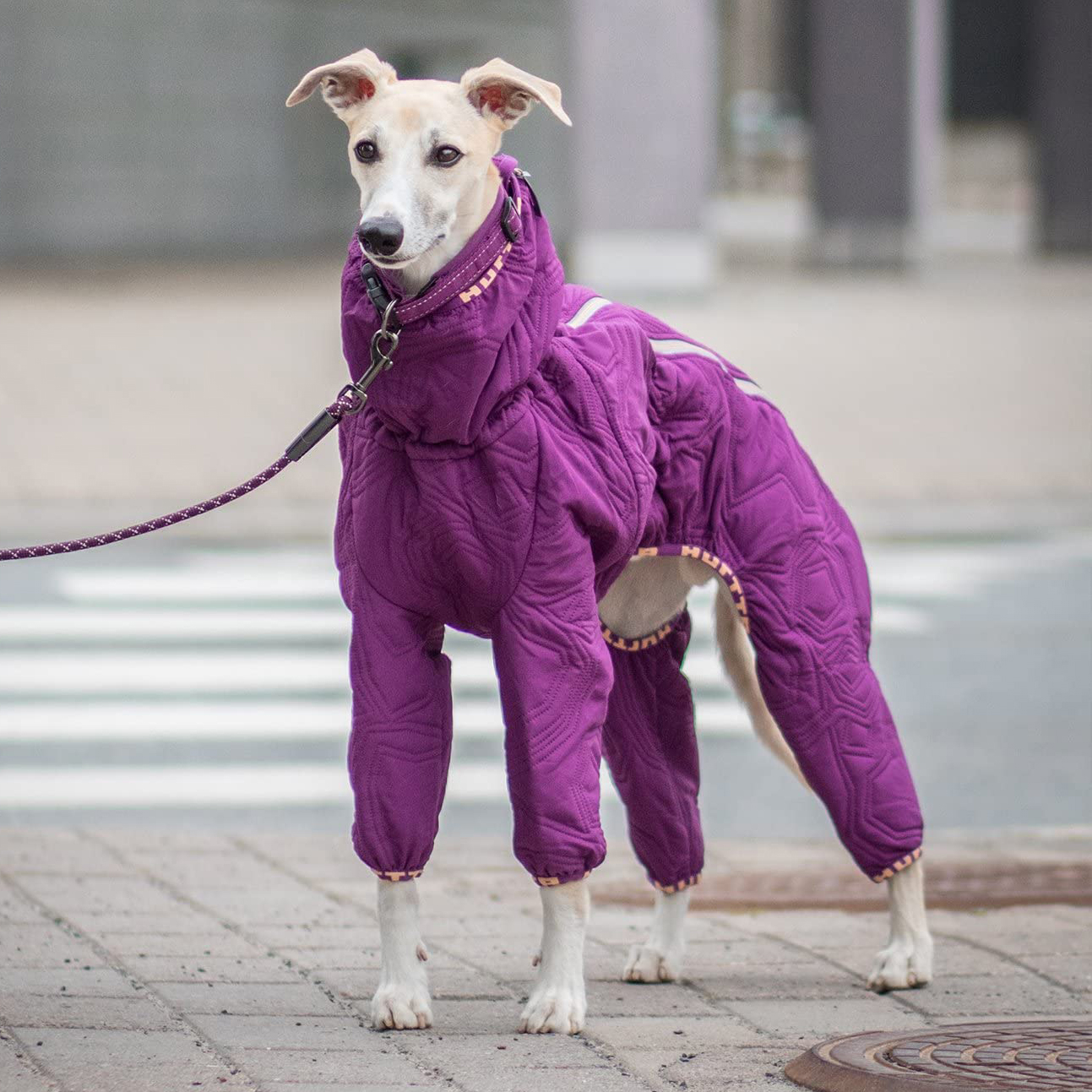 hurtta-casual-quilted-overall-dog-coat