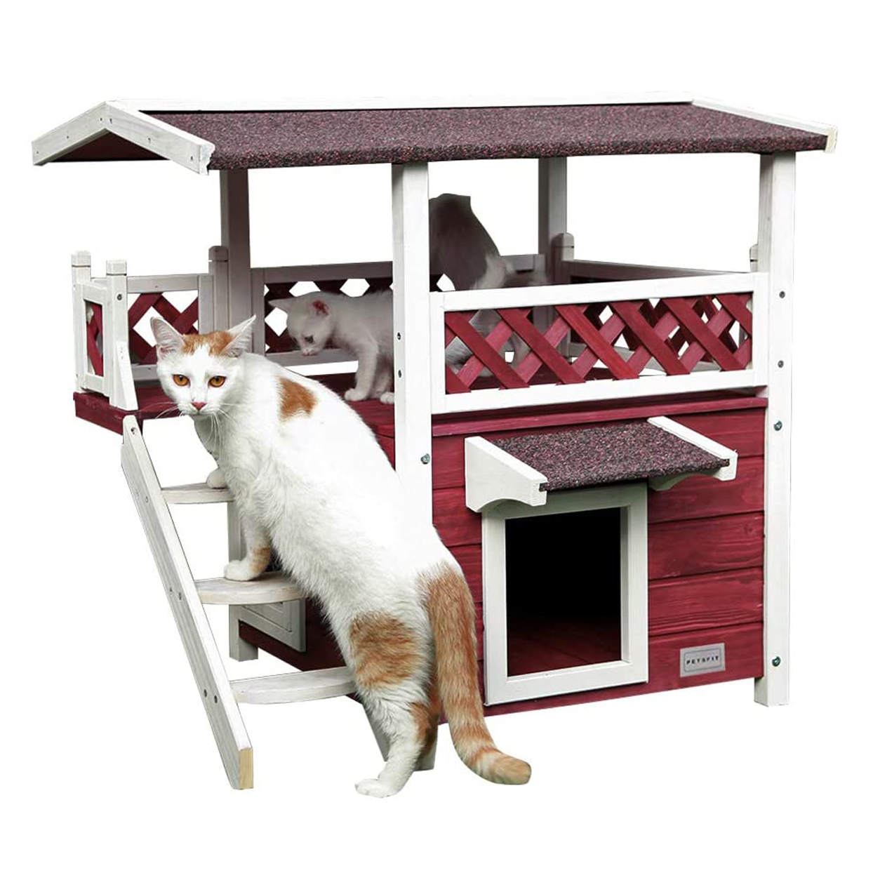 petsfit-outdoor-cat-house-with-escape-door-and-stairs