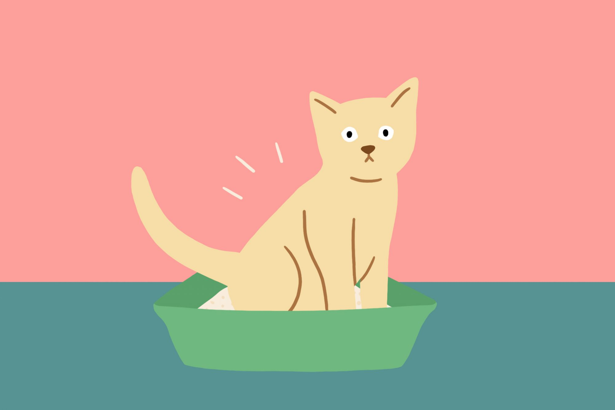Illustration of stressed kitty inside of a litter box