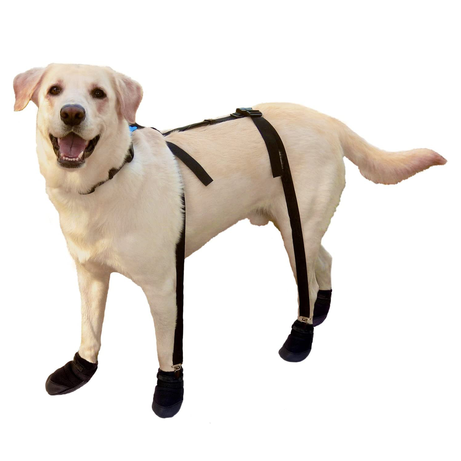 canine-footwear-suspenders-for-snug-boots