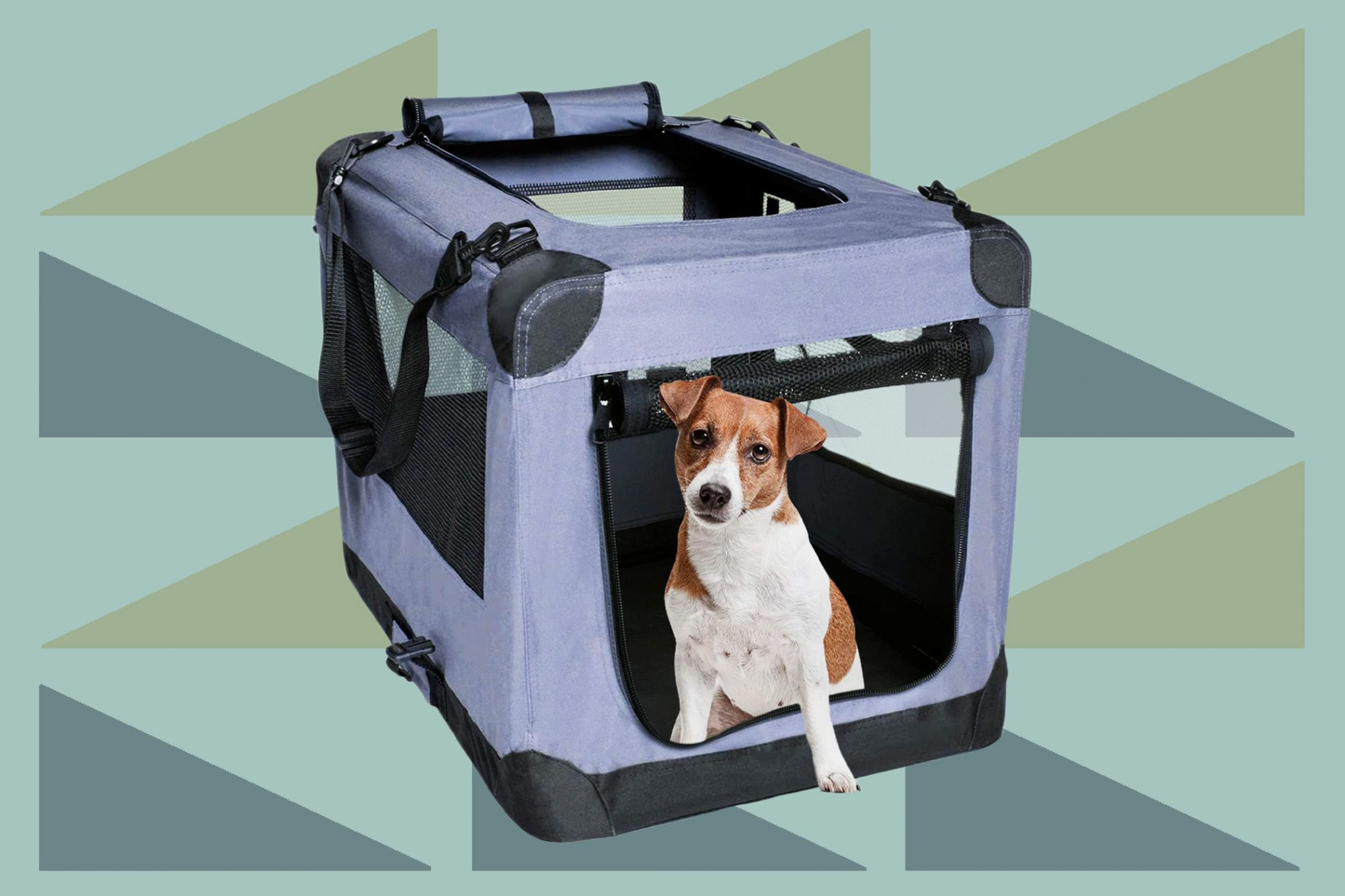 Jack russell terrier sits inside indigo dog travel crate