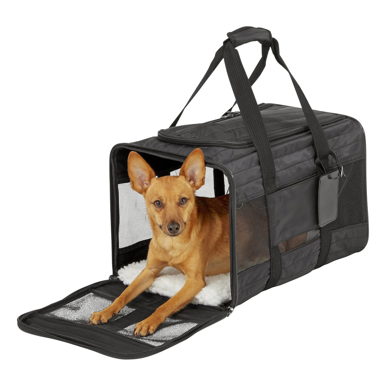 frisco-premium-travel-dog-and-cat-carrier-bag