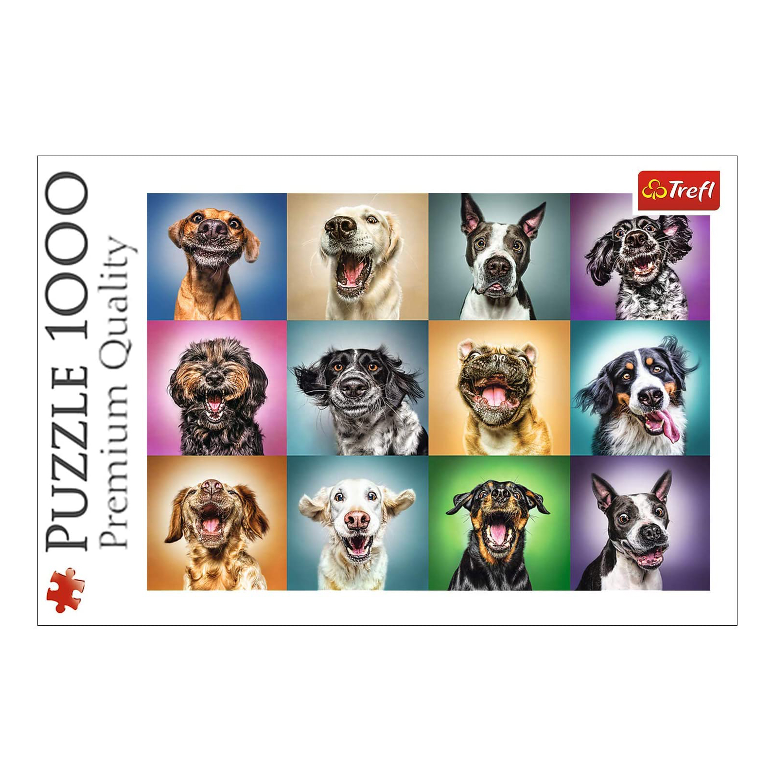 funny-dog-portraits-puzzle