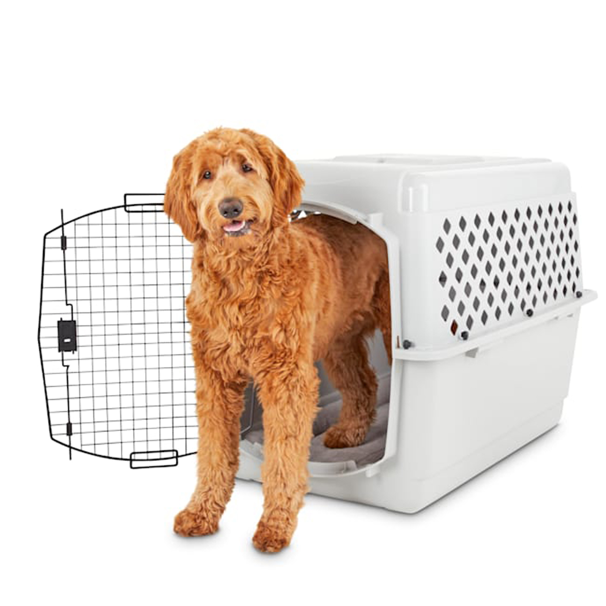 you-and-me-classic-dog-kennel