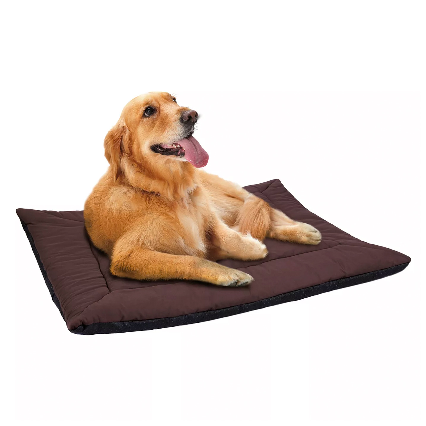 paws-and-pals-self-warming-pet-bed