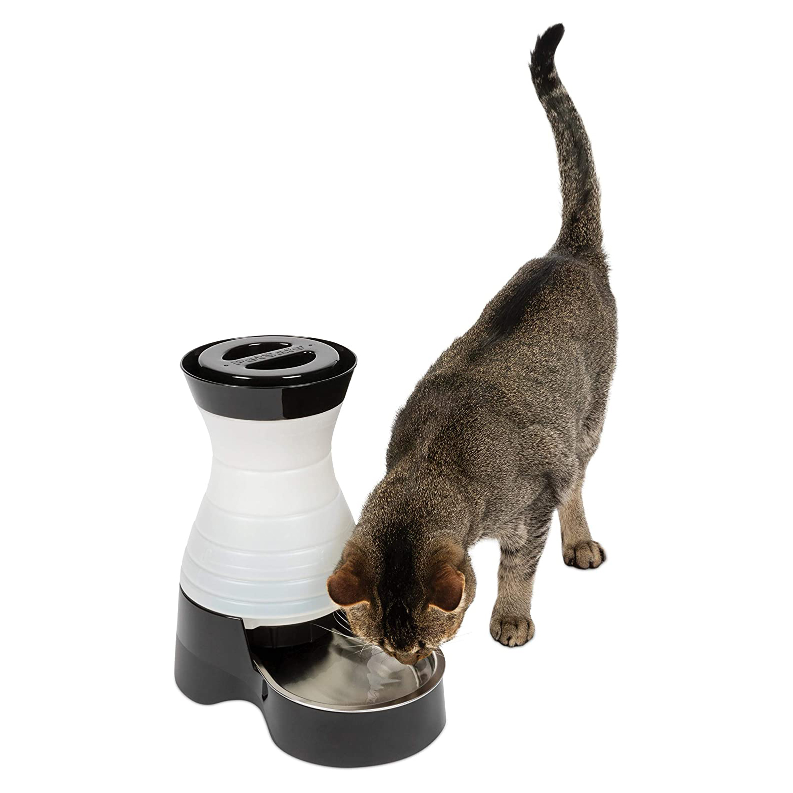 petsafe-healthy-pet-gravity-food-or-water-station