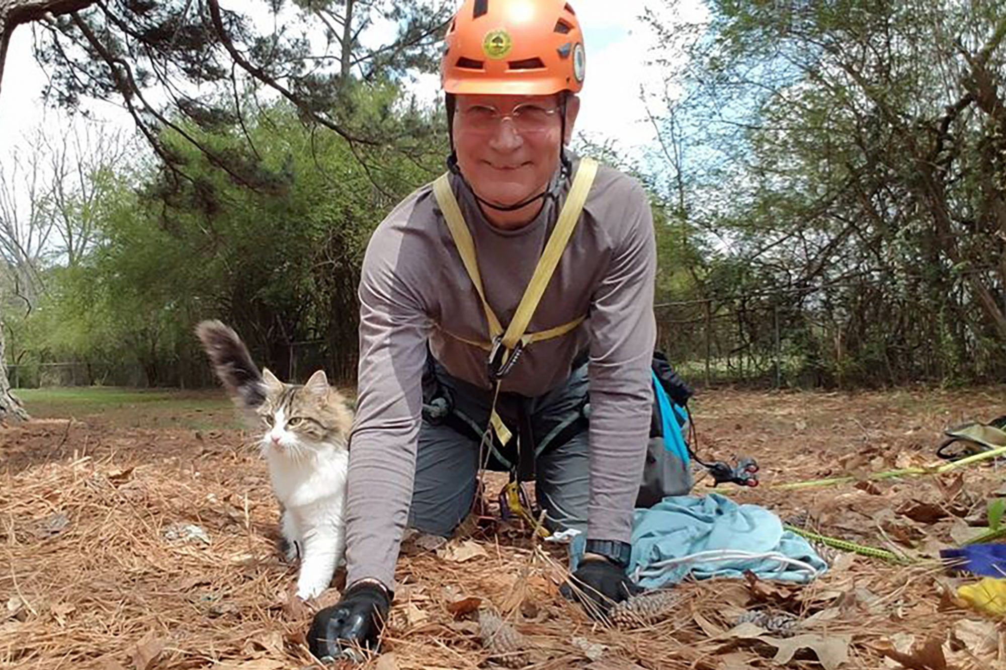 Normer with rescued cat