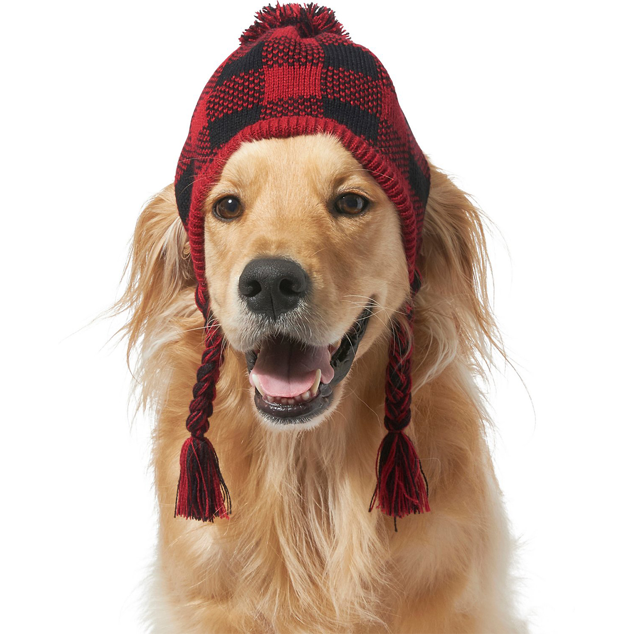 frisco plaid dog knitted hat