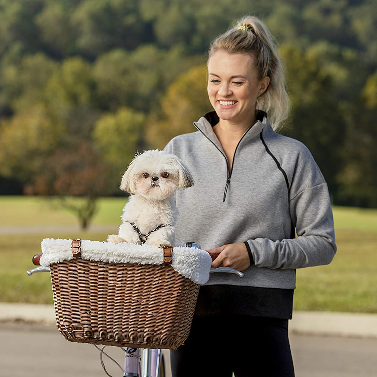 petsafe-happy-ride-wicker-bicycle-basket-for-dogs