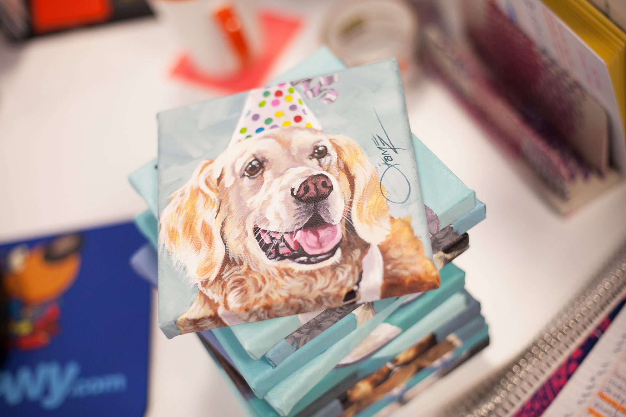 Square painted portrait of retriever in birthday hat