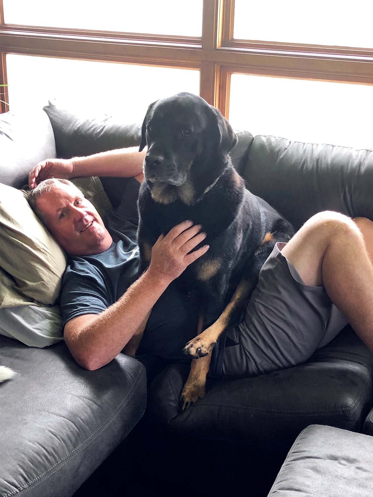 Large dog sits on man's lap on coach