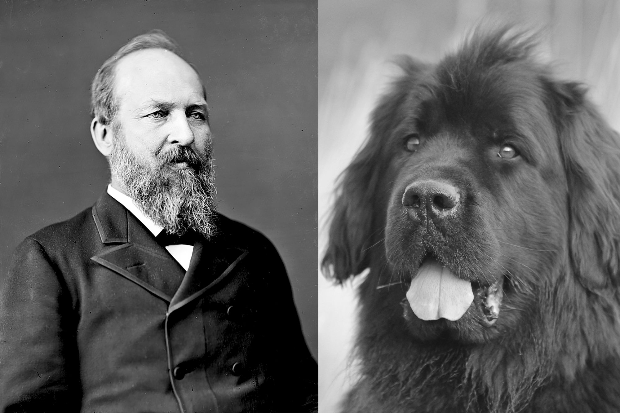 Composite of James A. Garfield and large dog