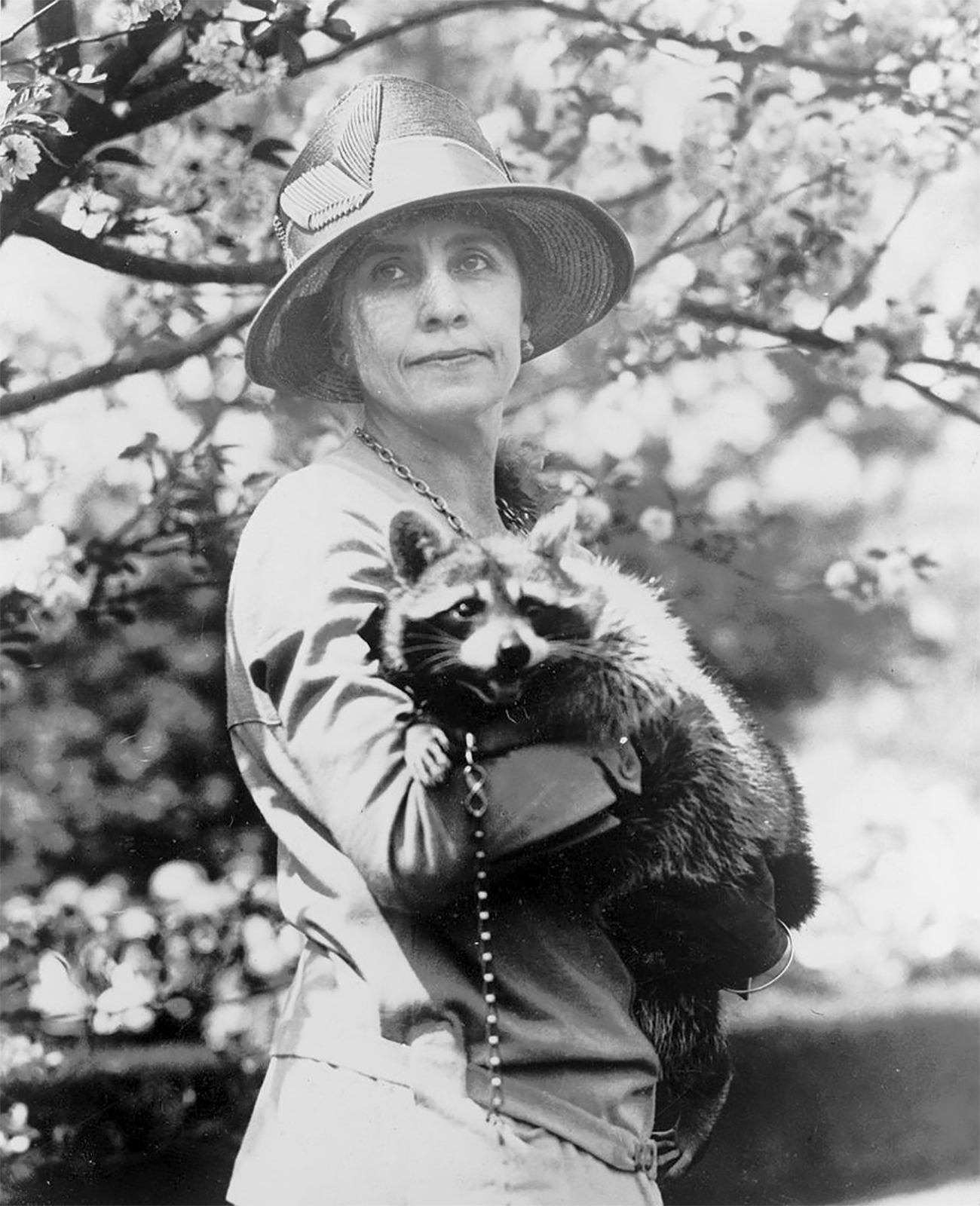 Photo of woman holding a pet raccoon