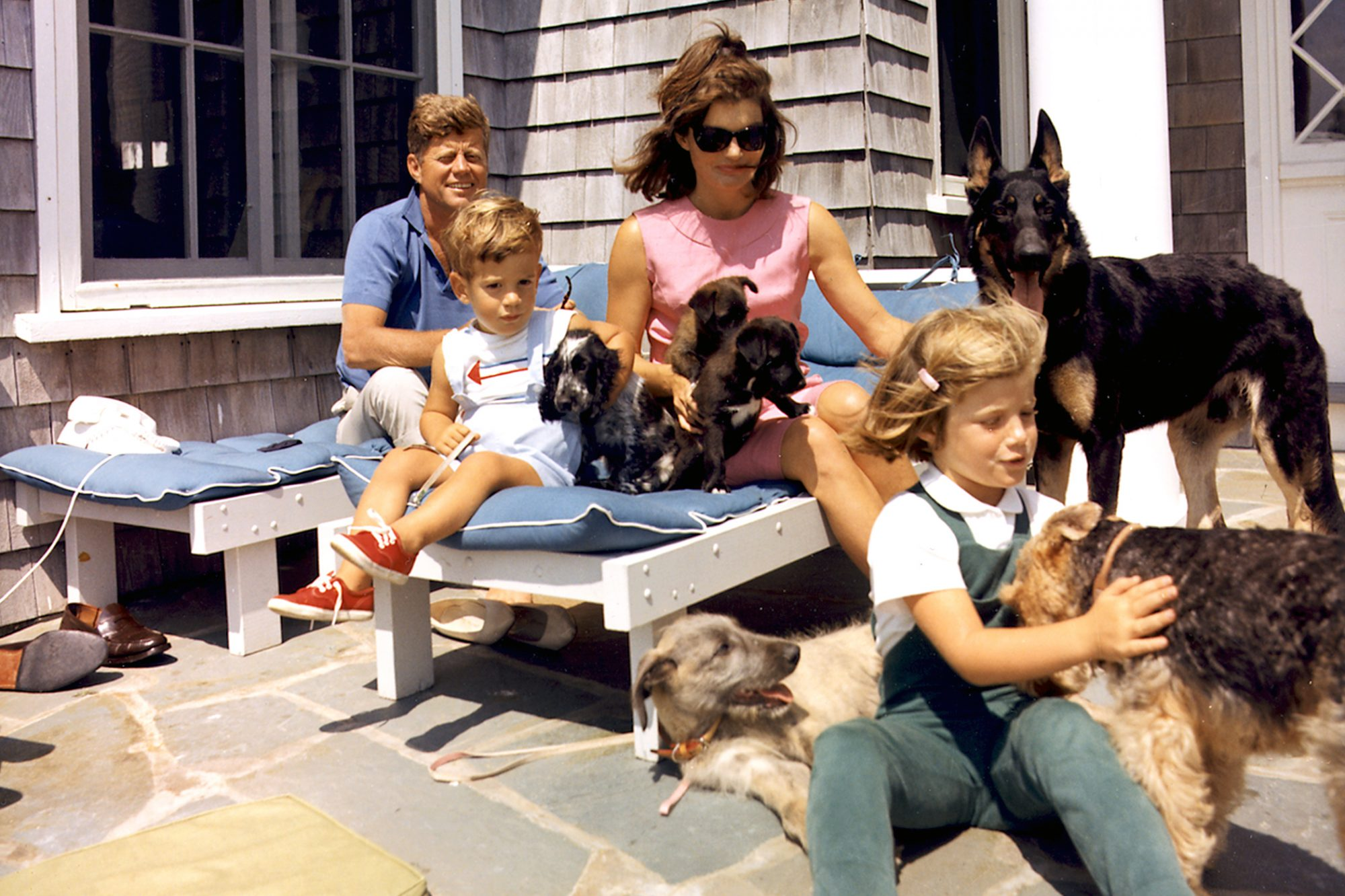 Photograph of John F. Kennedy enjoying his family and various dogs on a sunny day