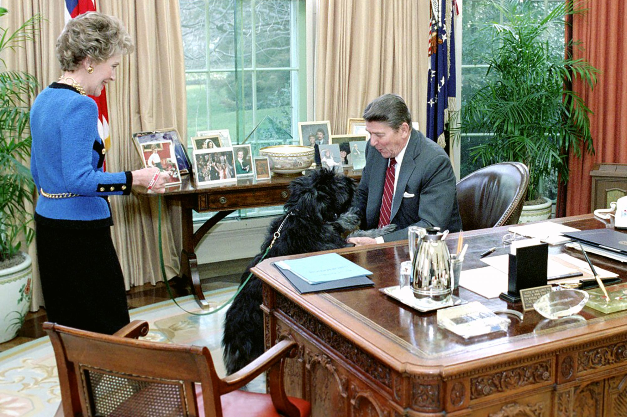 Photo of Ronald Reagan embracing a black dog in the Oval Office