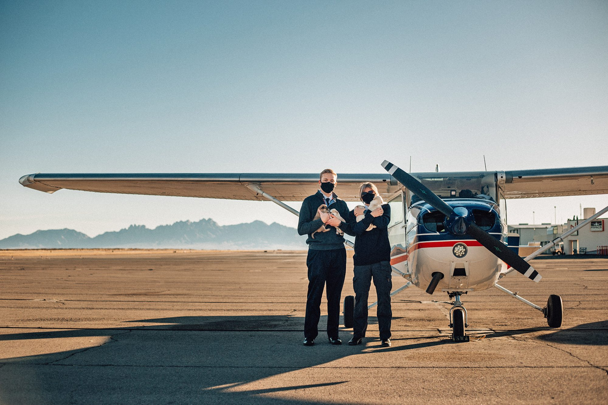 pilots standing in front of small plane with four puppies