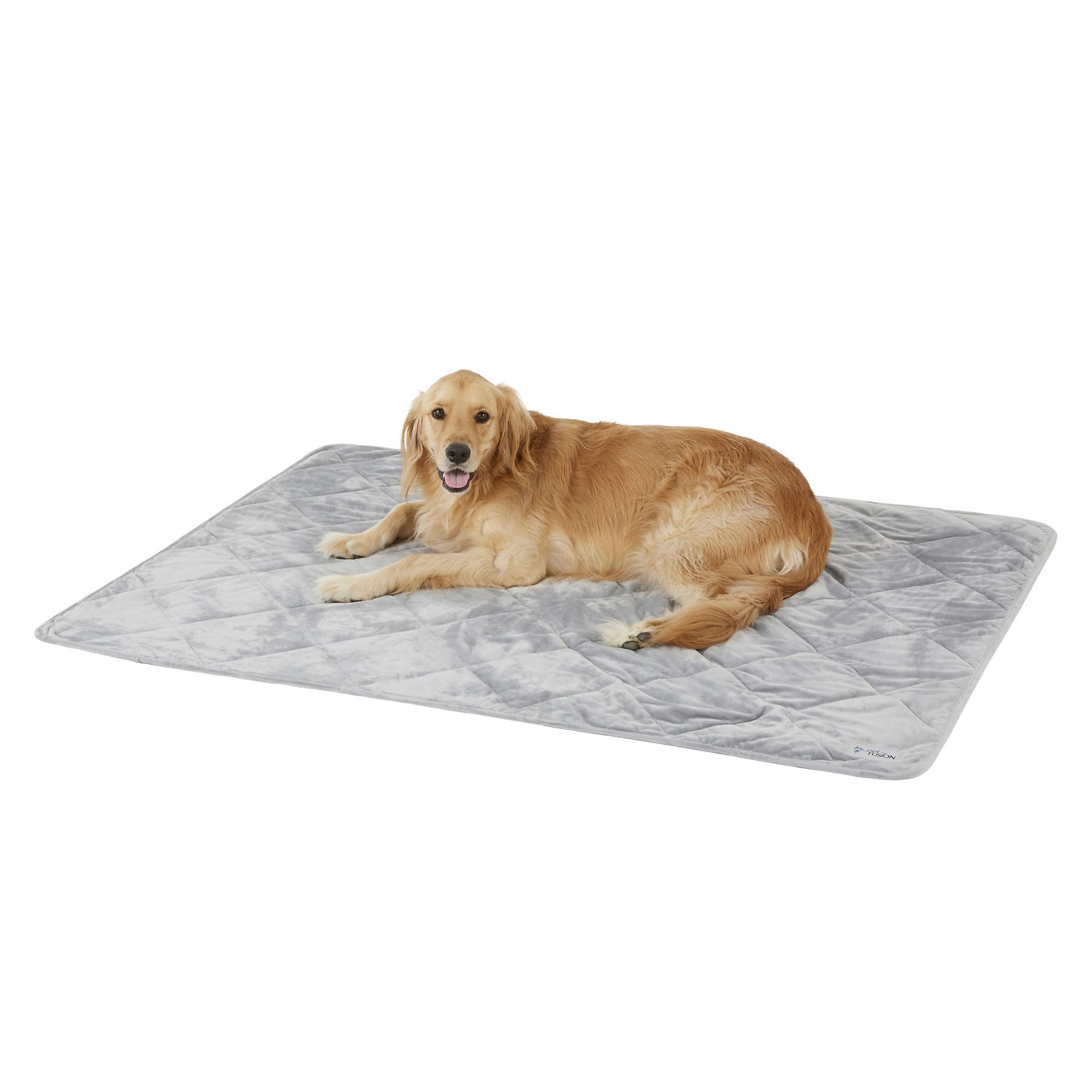 petfusion-microplush-quilted-dog-and-cat-blanket
