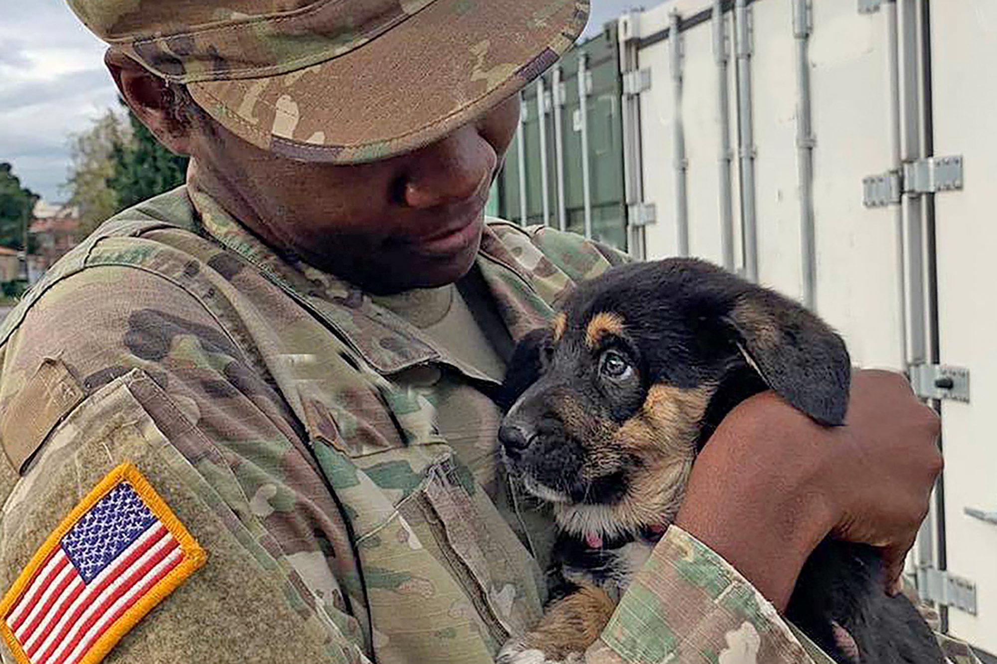 soldier holding dog