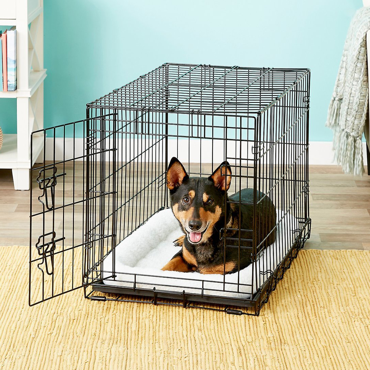 frisco-fold-and-carry-single-door-collapsible-wire-dog-crate