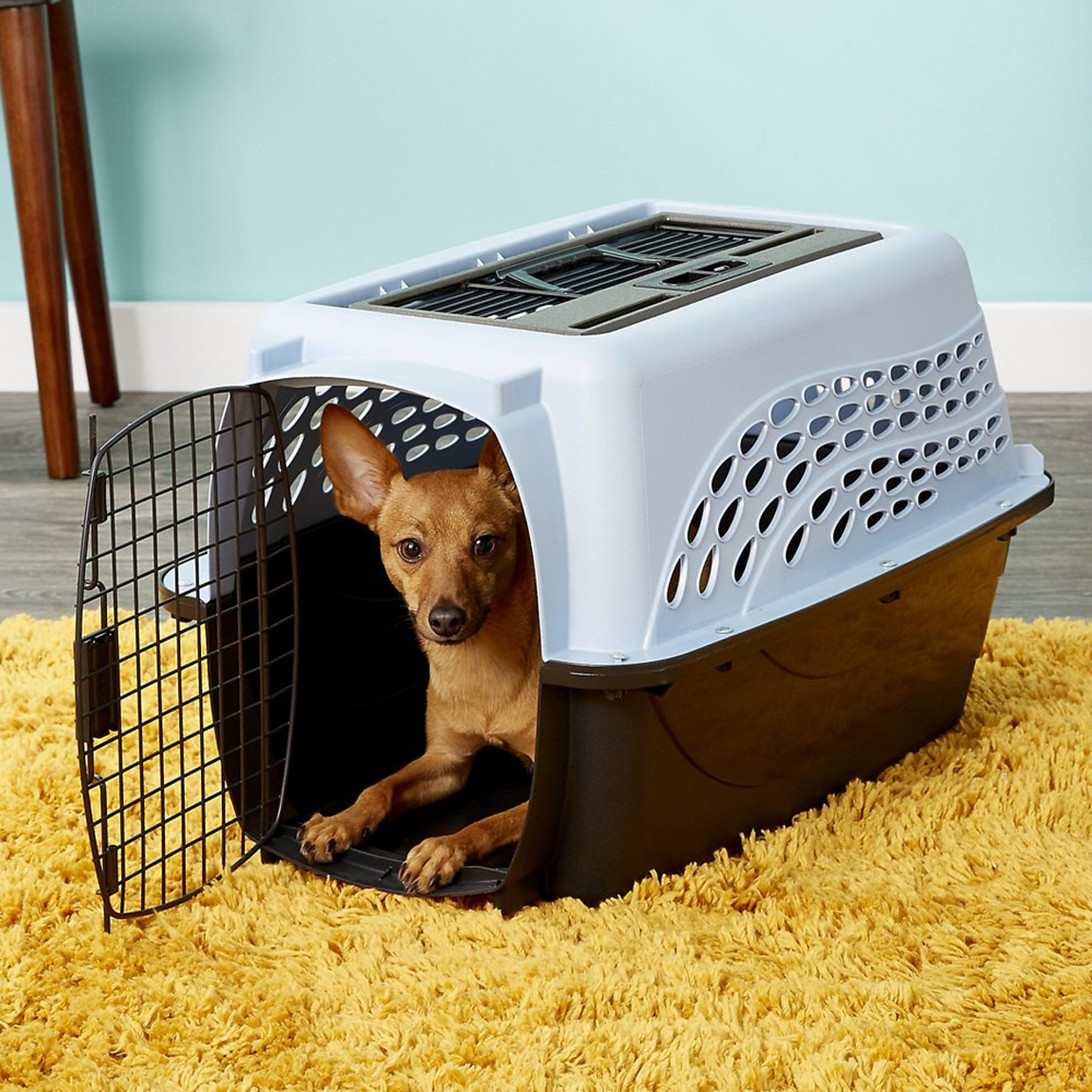 petmate-two-door-top-load-dog-and-cat-kennel