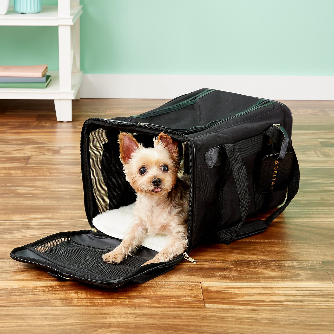 sherpa-delta-airline-approved-dog-and-cat-carrier-bag