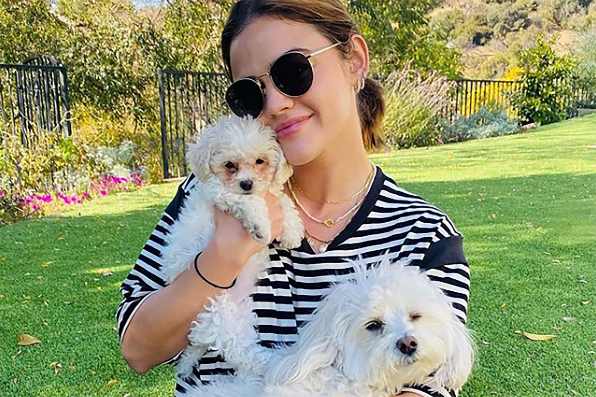 Lucy Hale holding new puppy