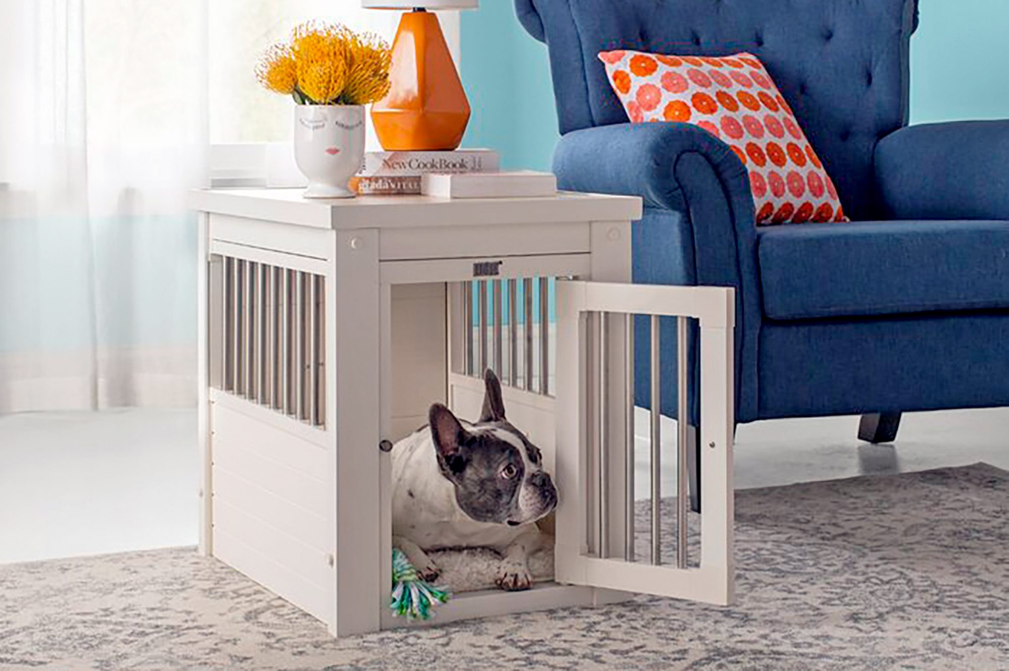 dog in a home decor crate
