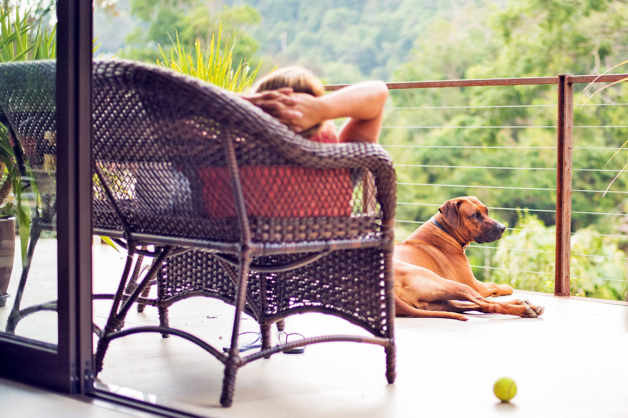 Shot of a brown dog sitting in balcony with a woman relaxing on wicker lounge couch