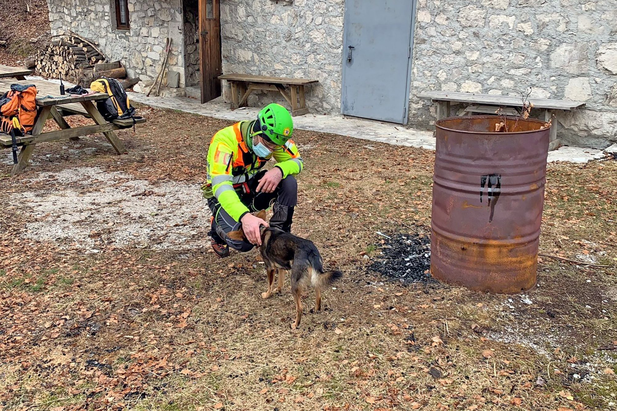 dog that was rescued from sub-zero temperatures