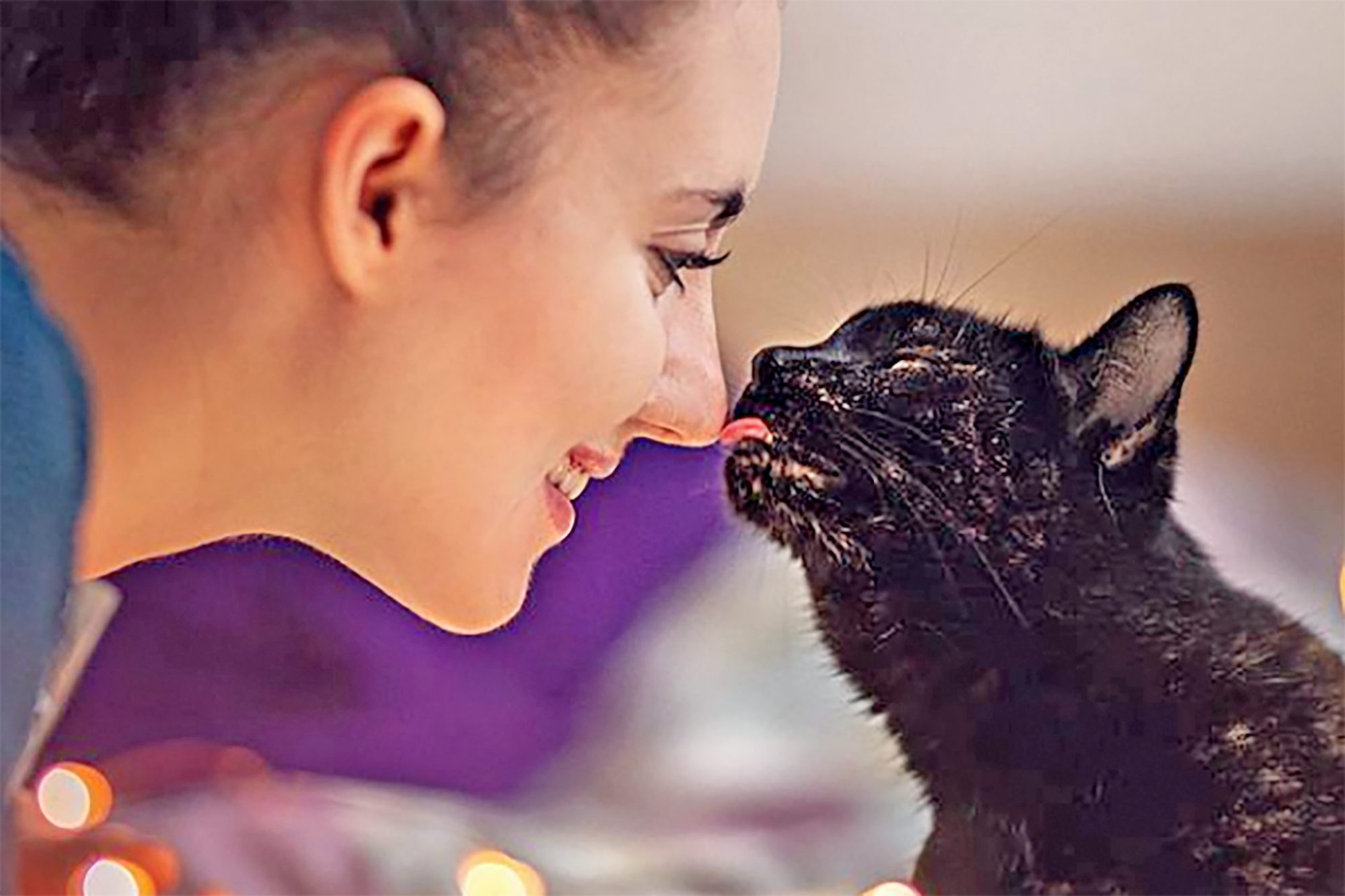 Black cat licks nose of woman