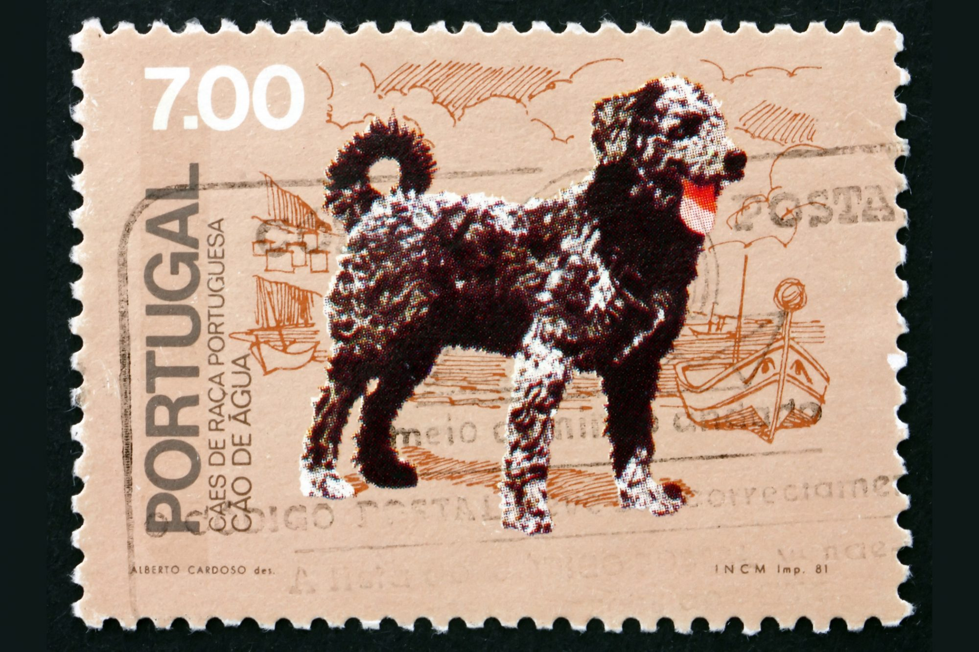 Portuguese Water Dog postage stamp from 1981
