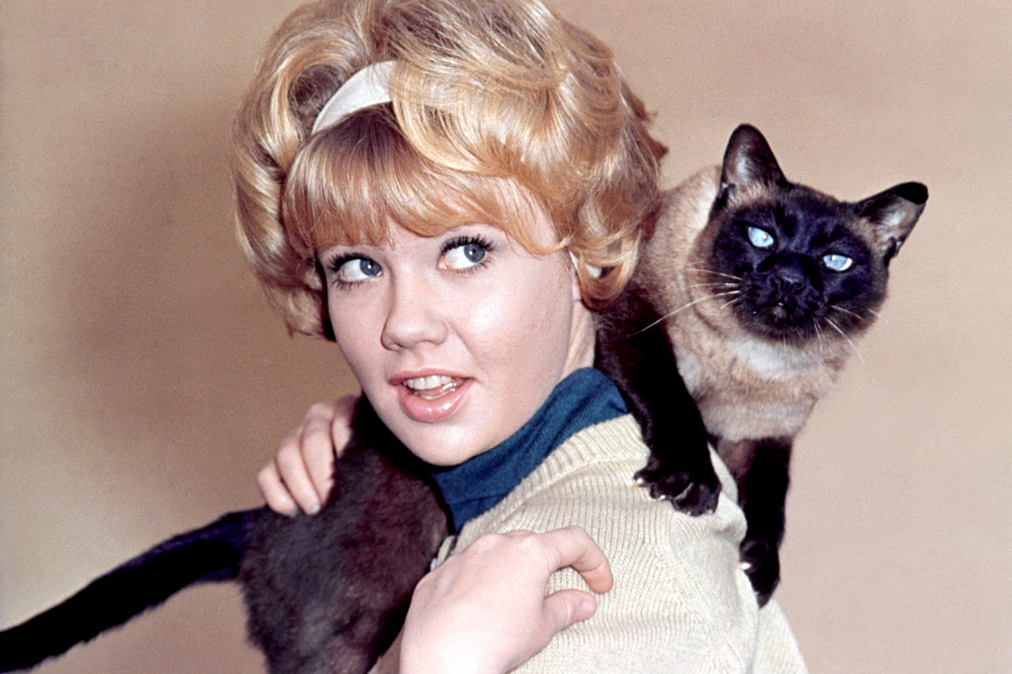 Women with 50s hairdo holds siamese cat on shoulder