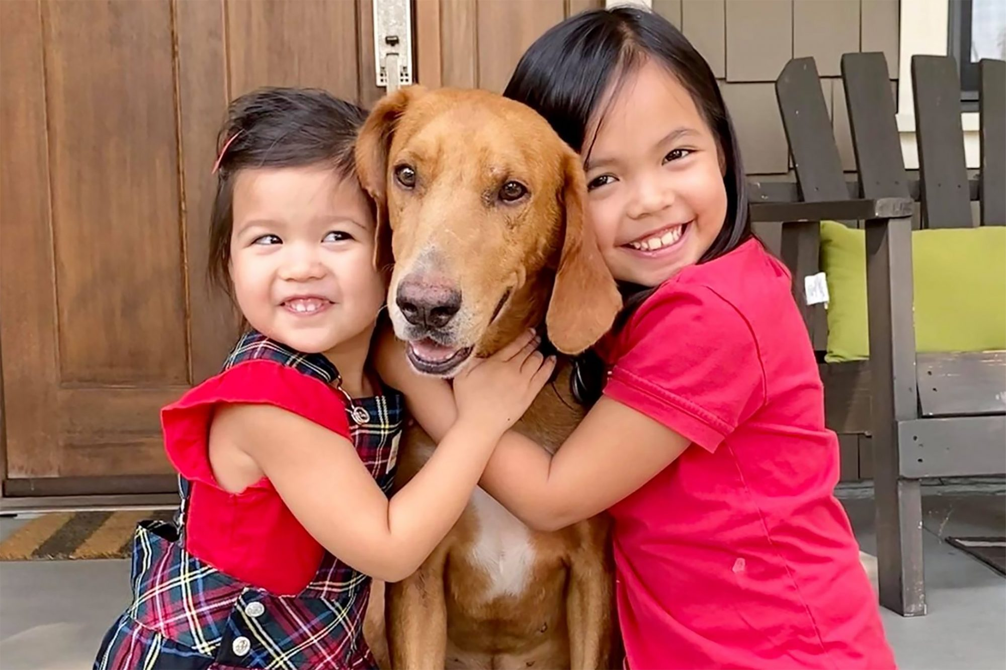 Two girls hug tan hound from either side