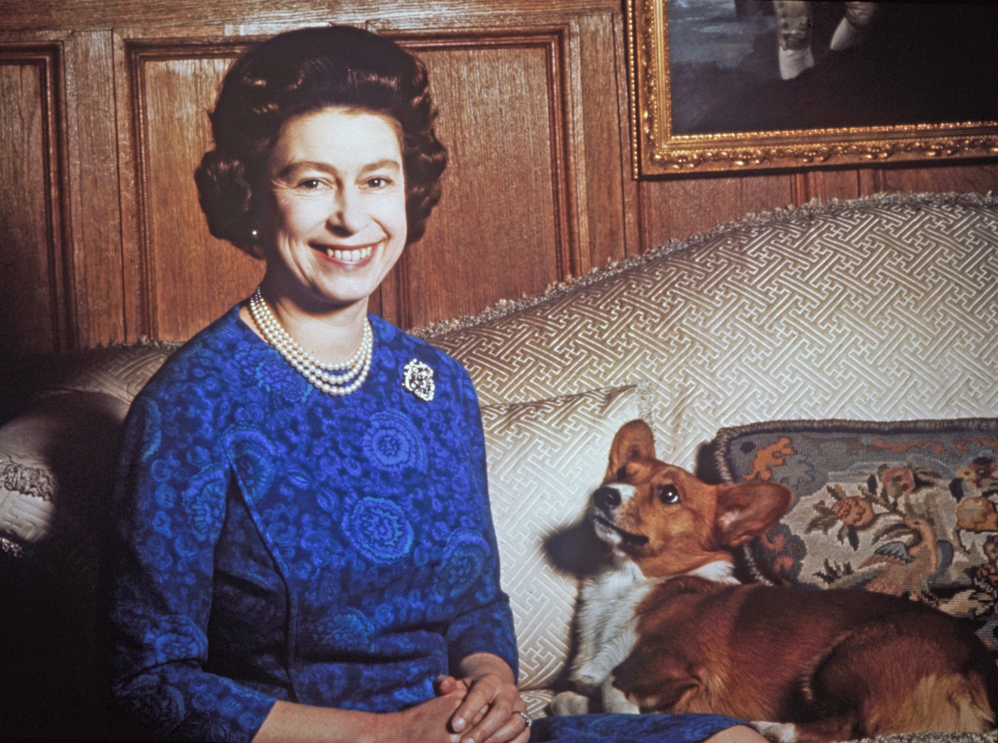 Color portrait of Queen Elizabeth and corgi on couch
