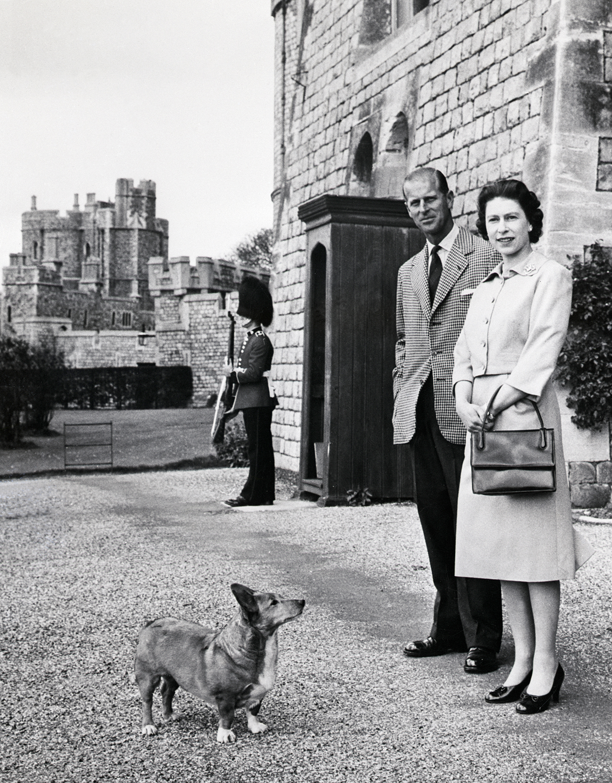Portrait oriented photo of Queen Elizabeth and Phillip, with corgi staring up at them from ground