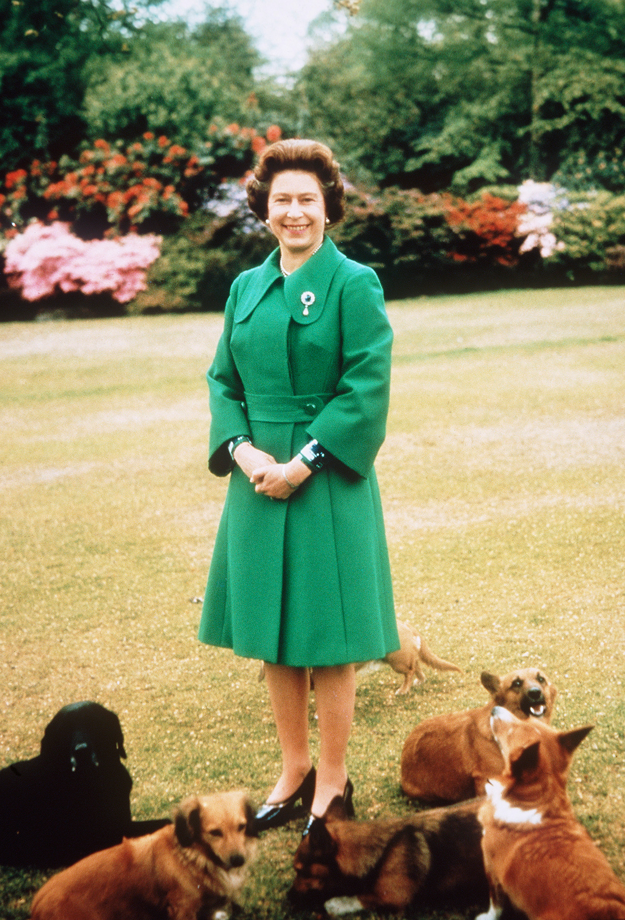 Queen Elizabeth stands in green dress on lawn surrounded by six dogs laying at her feet