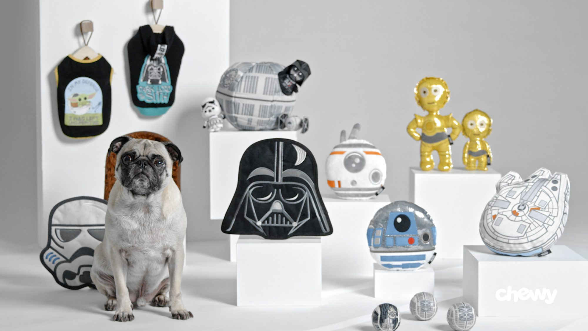 star wars collection at Chewy